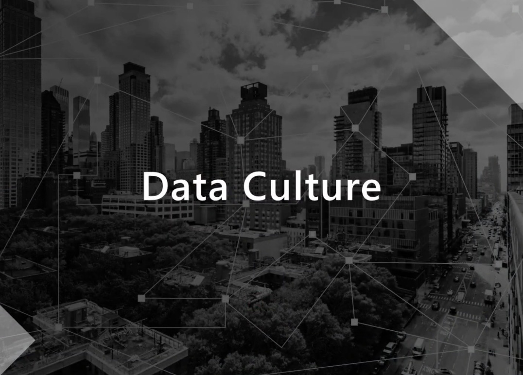 "Grayed out skyline with text overlay that says ""Data Culture"""